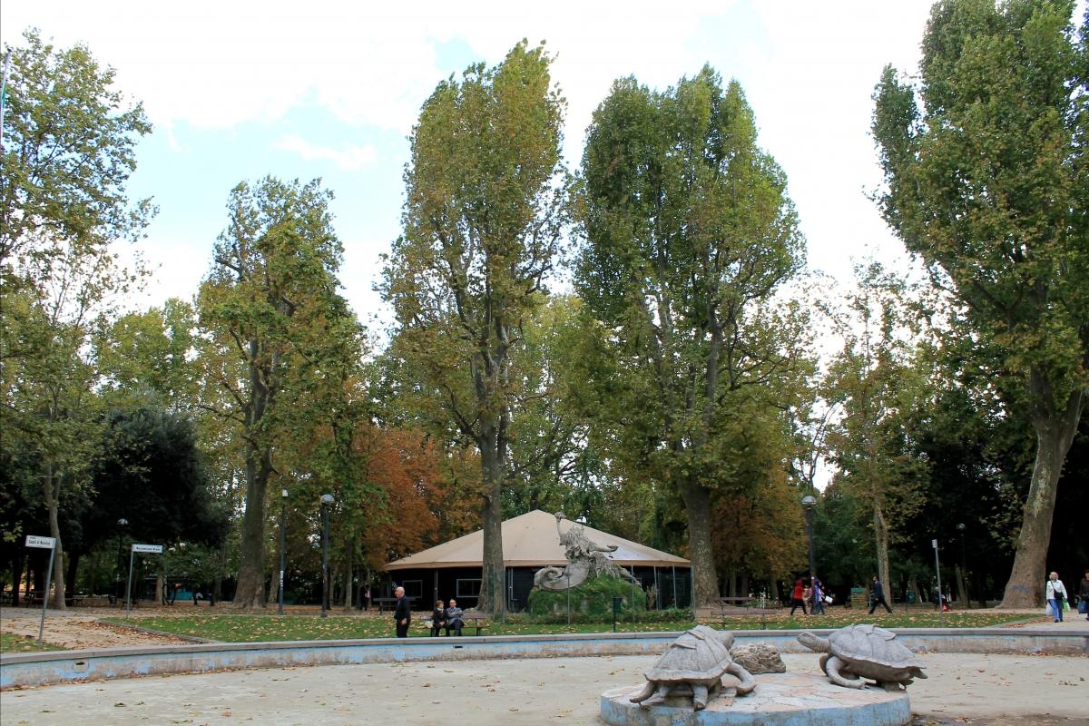 Schiacciato - Ila010 - Bologna (BO)