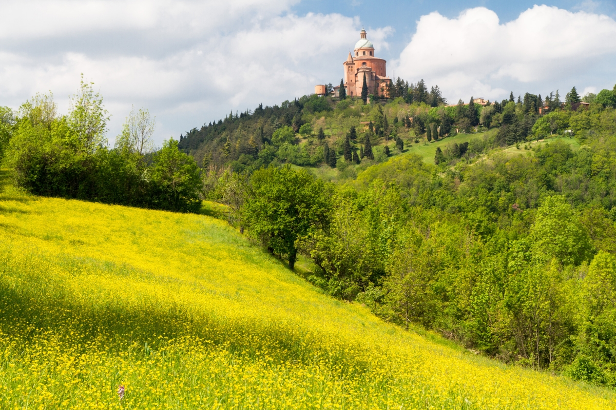Parco del Pellegrino, the yellow moment - Ugeorge - Bologna (BO)