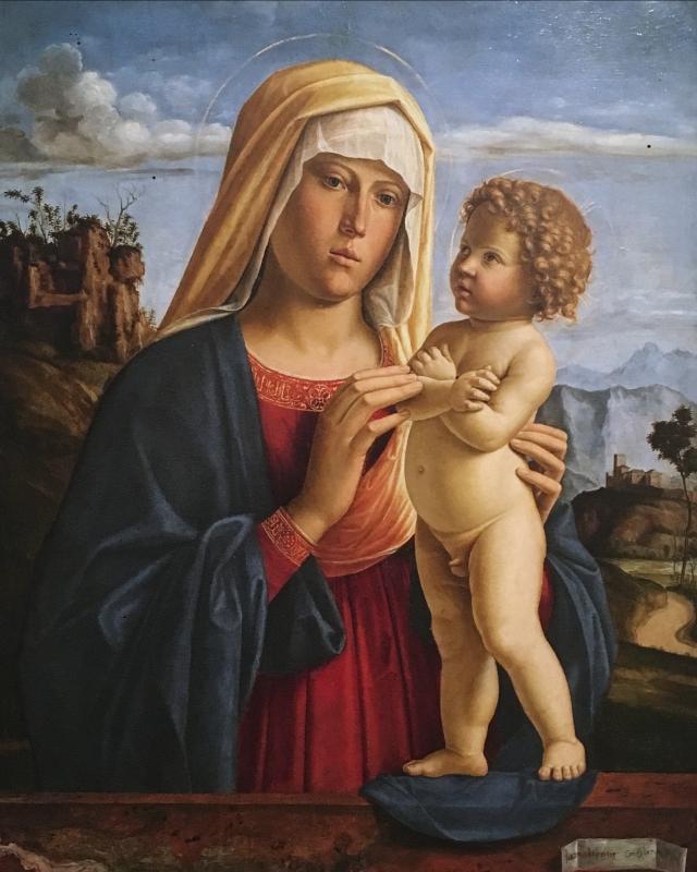 Madonna con Bambino Cima Giovan Battista detto Cima da Conegliano - Waltre manni - Bologna (BO)