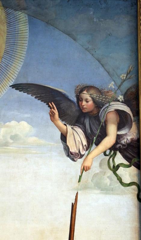 Francesco francia, annunziata tra santi, 1500, dall'annunziata, 02 angelo - Sailko - Bologna (BO)