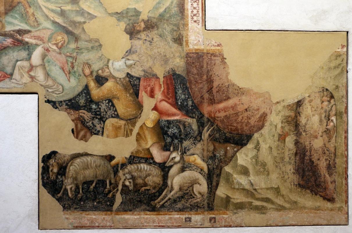 Vitale da bologna, annunciazione, natività, sogno di maria e guarigione miracolosa, 1340-45 ca., da oratorio di mezzaratta 07 - Sailko - Bologna (BO)