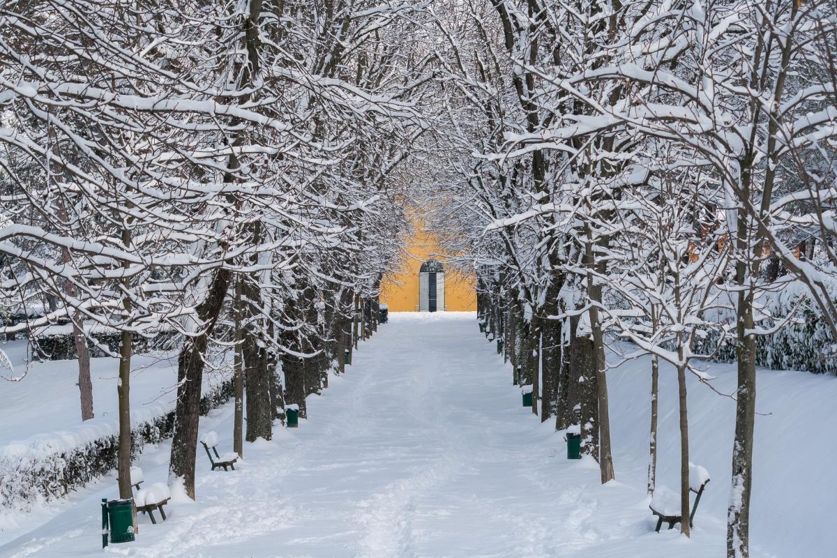 Villa delle Rose sotto la neve (1) - Ugeorge - Bologna (BO)