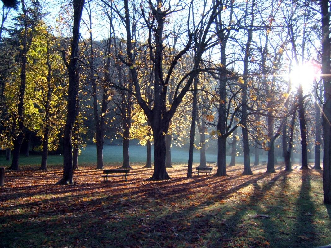 Parco della Chiusa di Casalecchio di Reno - alba autunnale - Flager1956 - Casalecchio di Reno (BO)