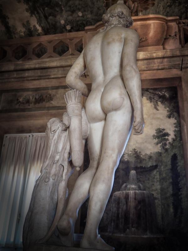 L'Apollo di Canova in palazzo d'Accursio - Bolorsi - Bologna (BO)