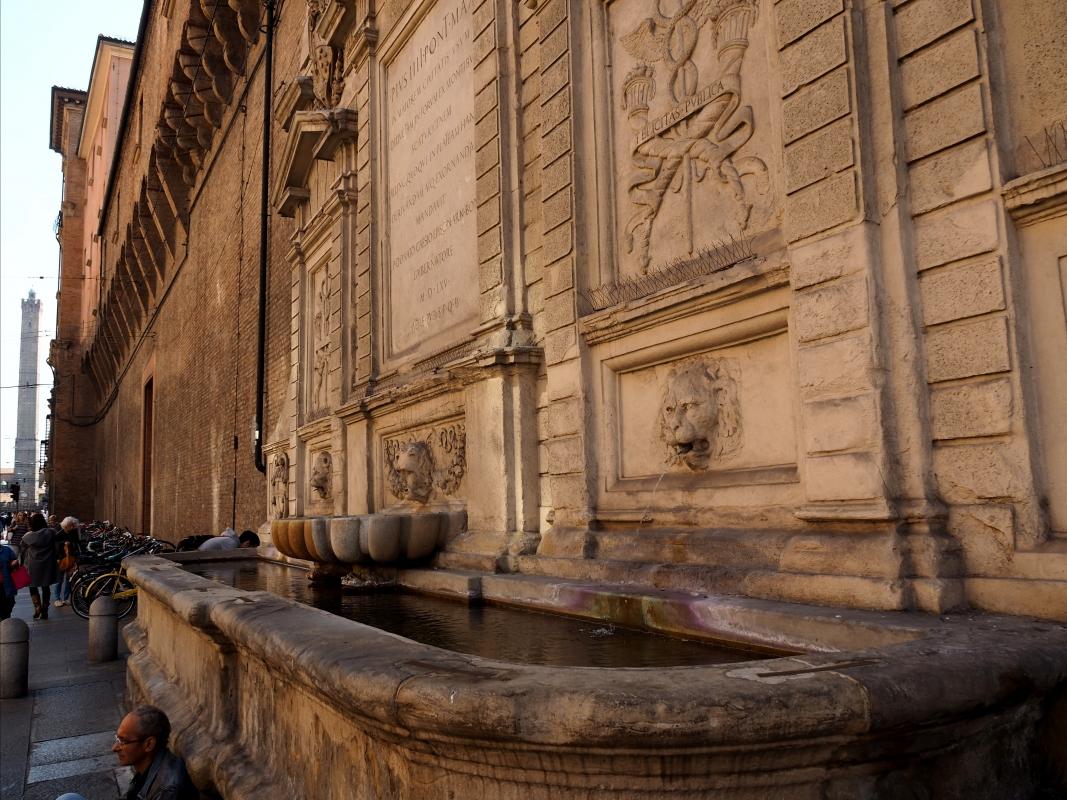 Fontana vecchia con vista sulla Torre degli Asinelli - MarkPagl - Bologna (BO)