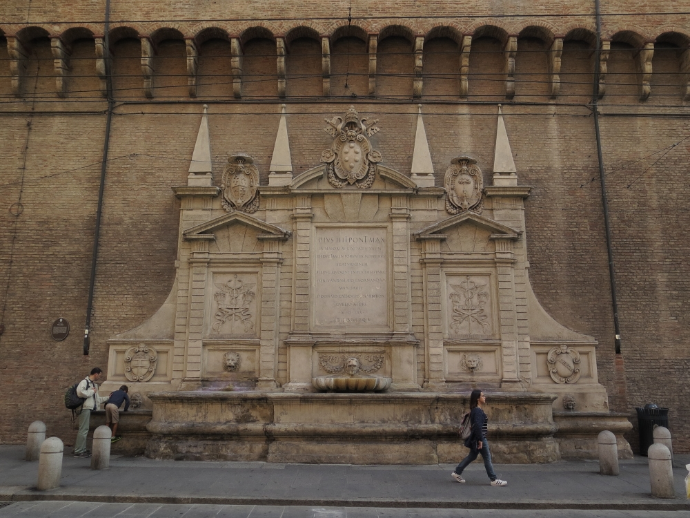 Bologna Fontana Vecchia 1 - GennaroBologna - Bologna (BO)
