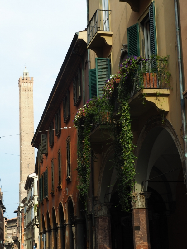 Strada Maggiore - MarkPagl - Bologna (BO)