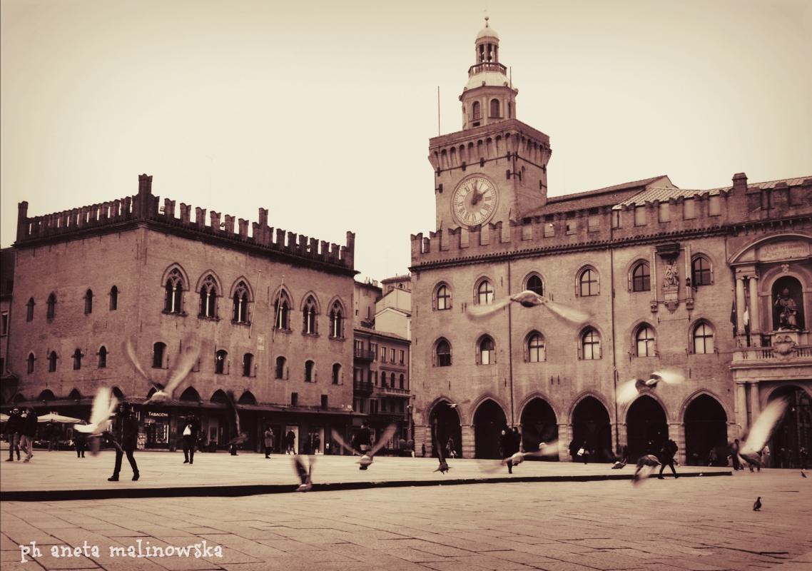 Palazzo d'Accursio VISTO DA PIAZZA MAGGIORE - Anita1malina - Bologna (BO)