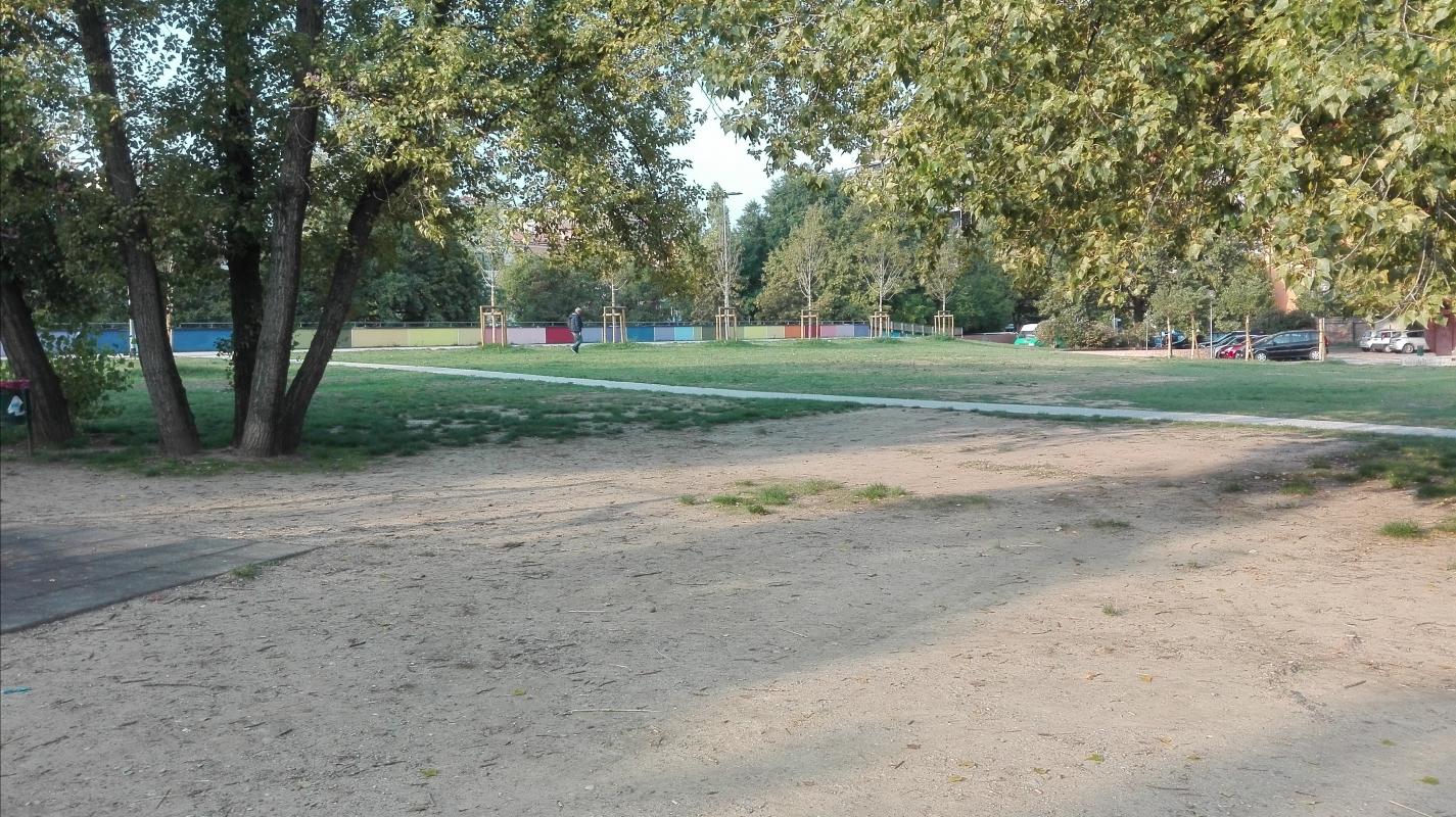 La luce del mattino al parco - Scheletropaffuto - Bologna (BO)