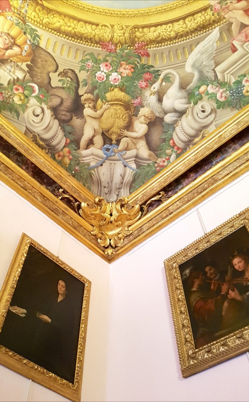 Palazzo Pepoli Campogrande - Sala Felsina soffitto angolo1 - Opi1010 - Bologna (BO)