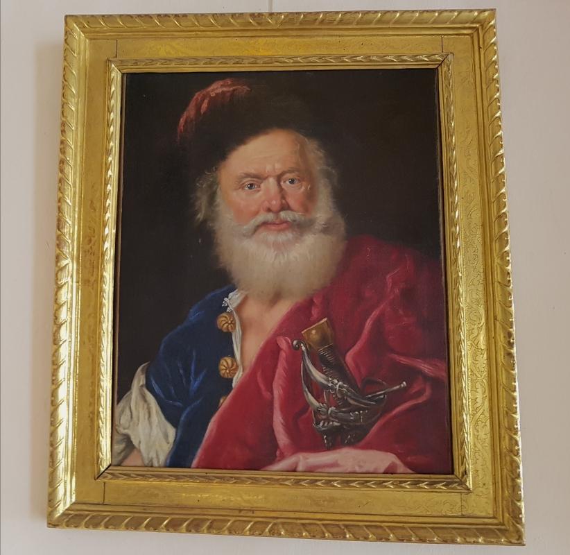 Palazzo Pepoli Campogrande - Sala di Alessandro vecchio schiavone di Niccolò cassana - Opi1010 - Bologna (BO)