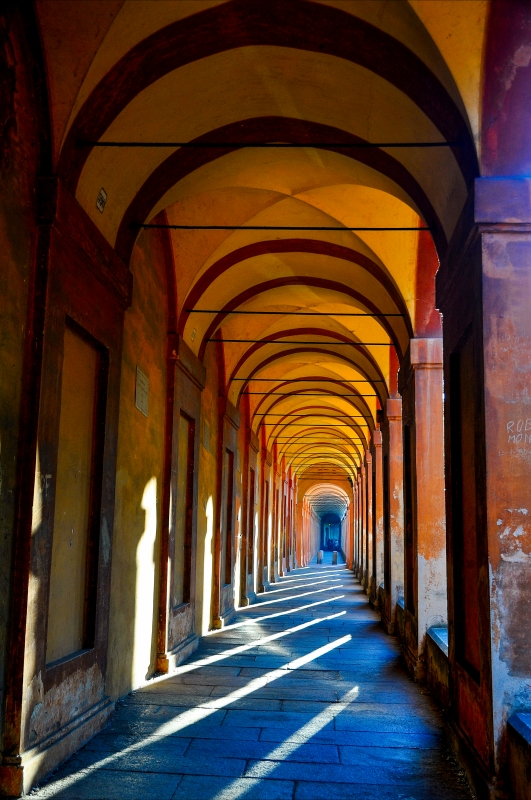 Portico san luca 3 - BARBARA ZOLI - Bologna (BO)