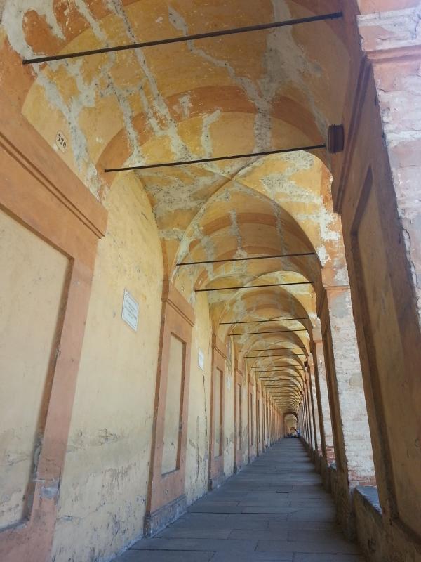 Il cammino verso il Portico di San Luca - Elisa frizza - Bologna (BO)