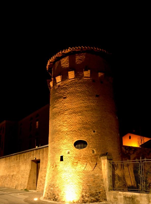Torre a nord ovest - Elisabetta Bignami - Budrio (BO)
