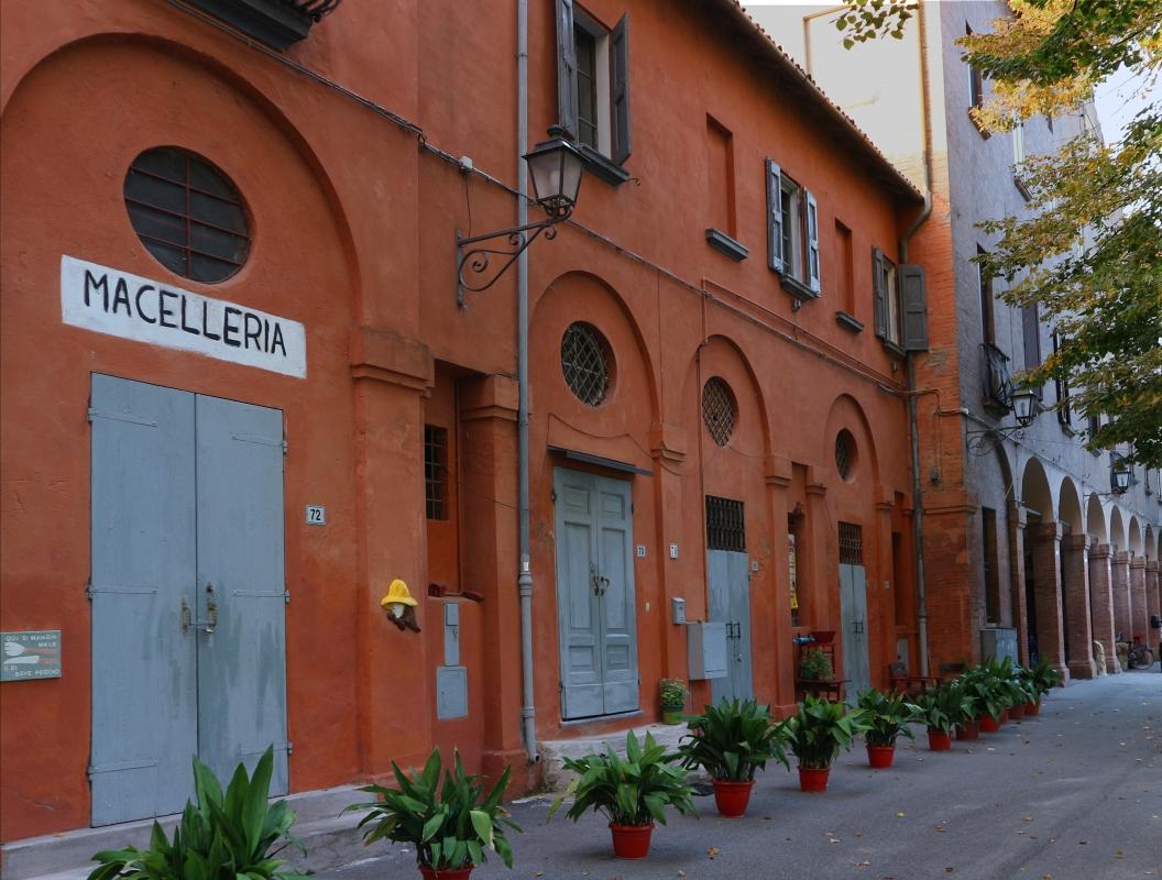 Selva Malvezzi 3 - Rosapicci - Molinella (BO)