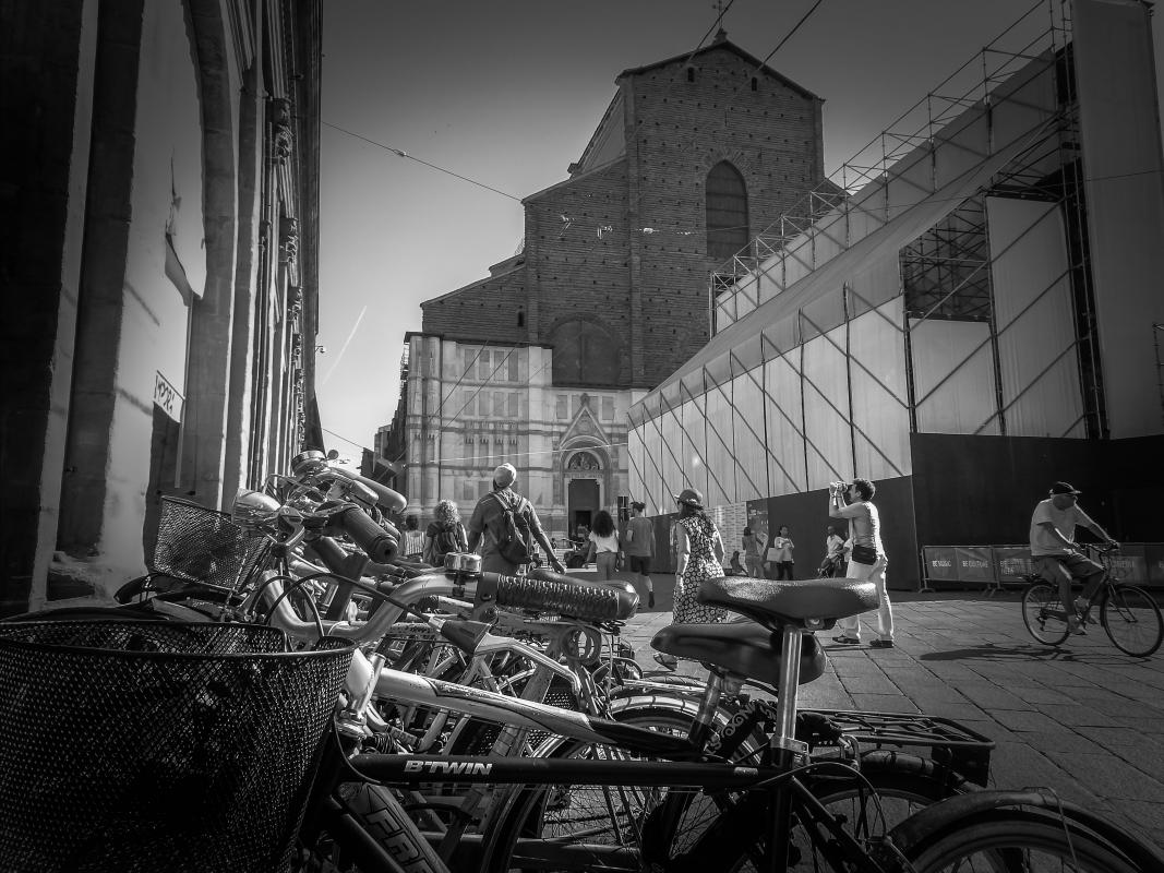 Biciclette a San Petronio - Maurizio rosaspina - Bologna (BO)