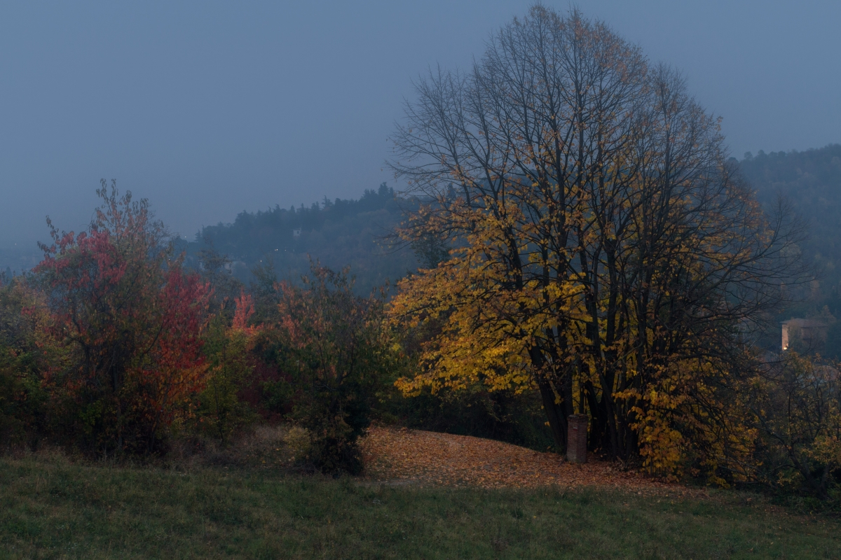 Parco S. Pellegrino al crepuscolo - Ugeorge - Bologna (BO)