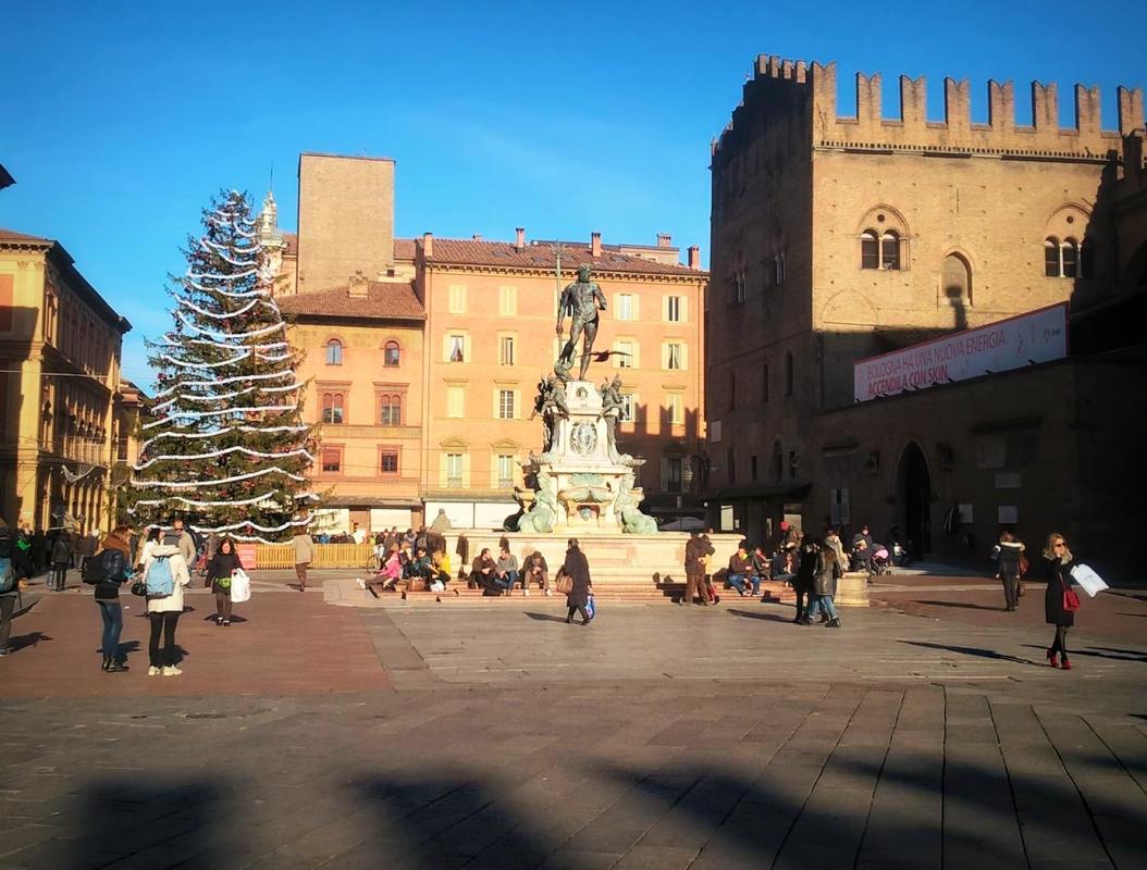 12374737 HG - Anita.malina - Bologna (BO)