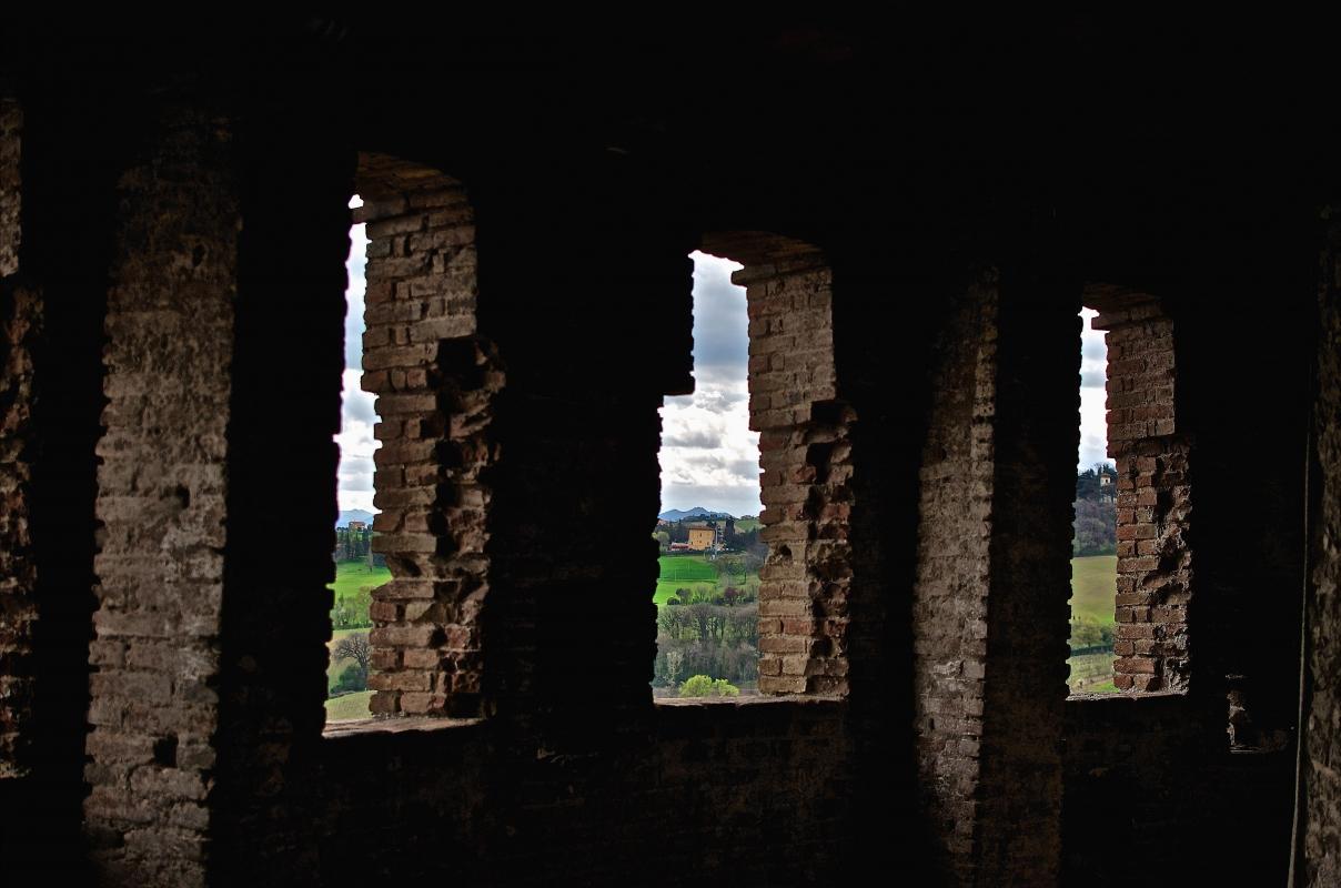 Suggestiva vista dalla torre della Rocca - Caba2011 - Dozza (BO)