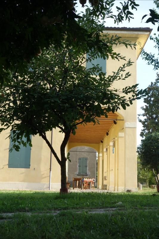 Terracini1 - Tdbo70 mazzo05 checco08 - Sala Bolognese (BO)
