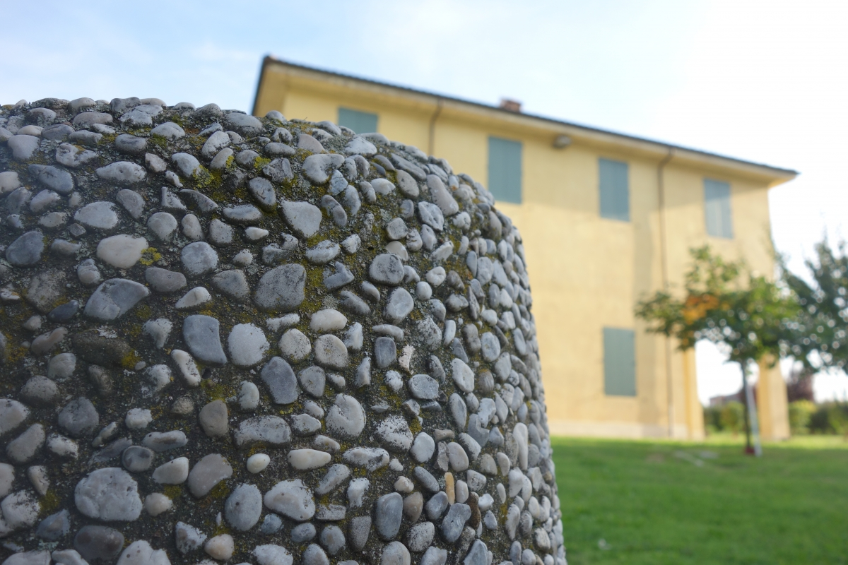 Terracini3 - Tdbo70 mazzo05 checco08 - Sala Bolognese (BO)