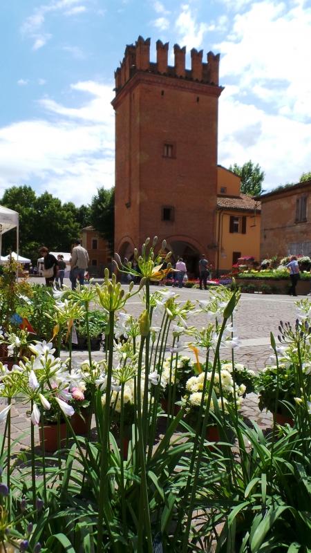 """Torresotto fotografato durante la mostra-mercato di fiori """"Il Verde Piano"""" - Ery31078 - San Giorgio di Piano (BO)"""