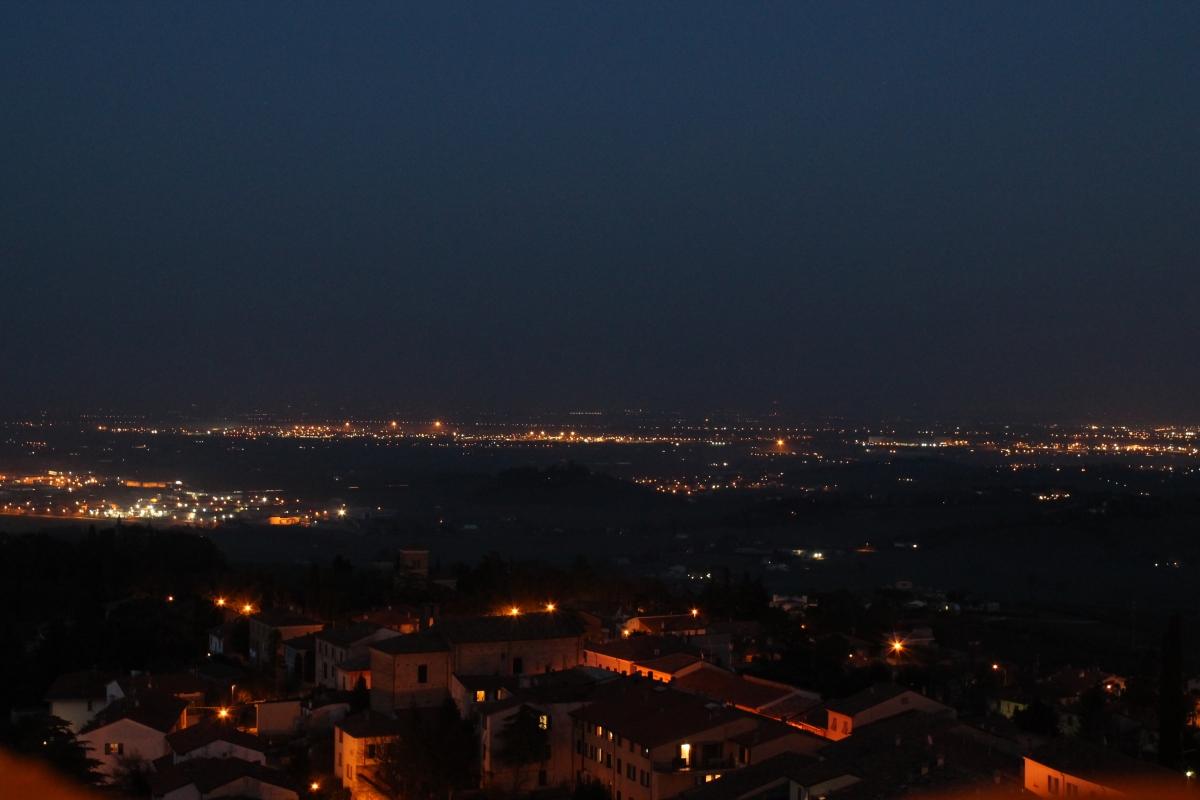 BERTINORO-BALCONE DI ROMAGNA-IMG 1285 - Flash2803 - Bertinoro (FC)