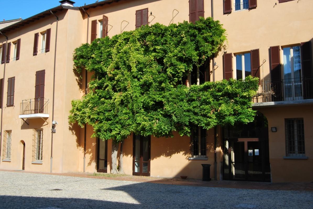 Palazzo Sassi Masini residenza Universitaria - Chiari86 - Forlì (FC)