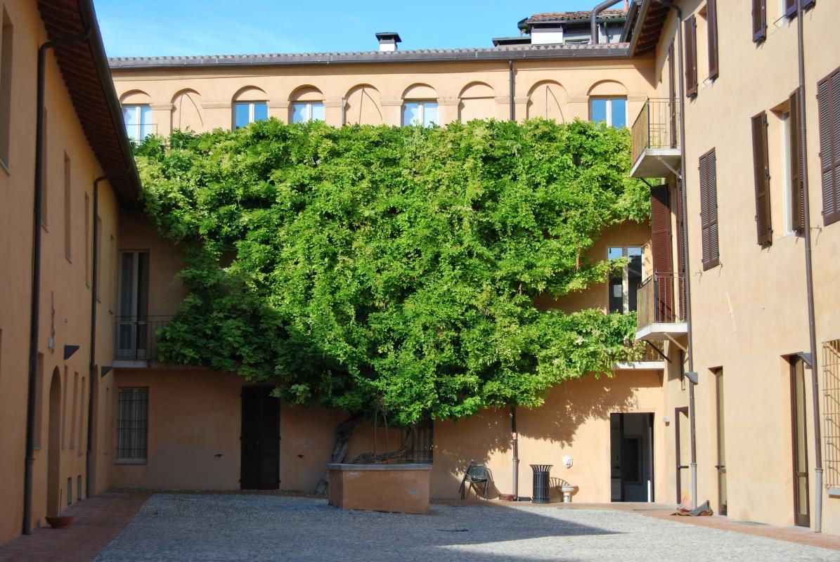 Particolare Palazzo Sassi - Chiari86 - Forlì (FC)
