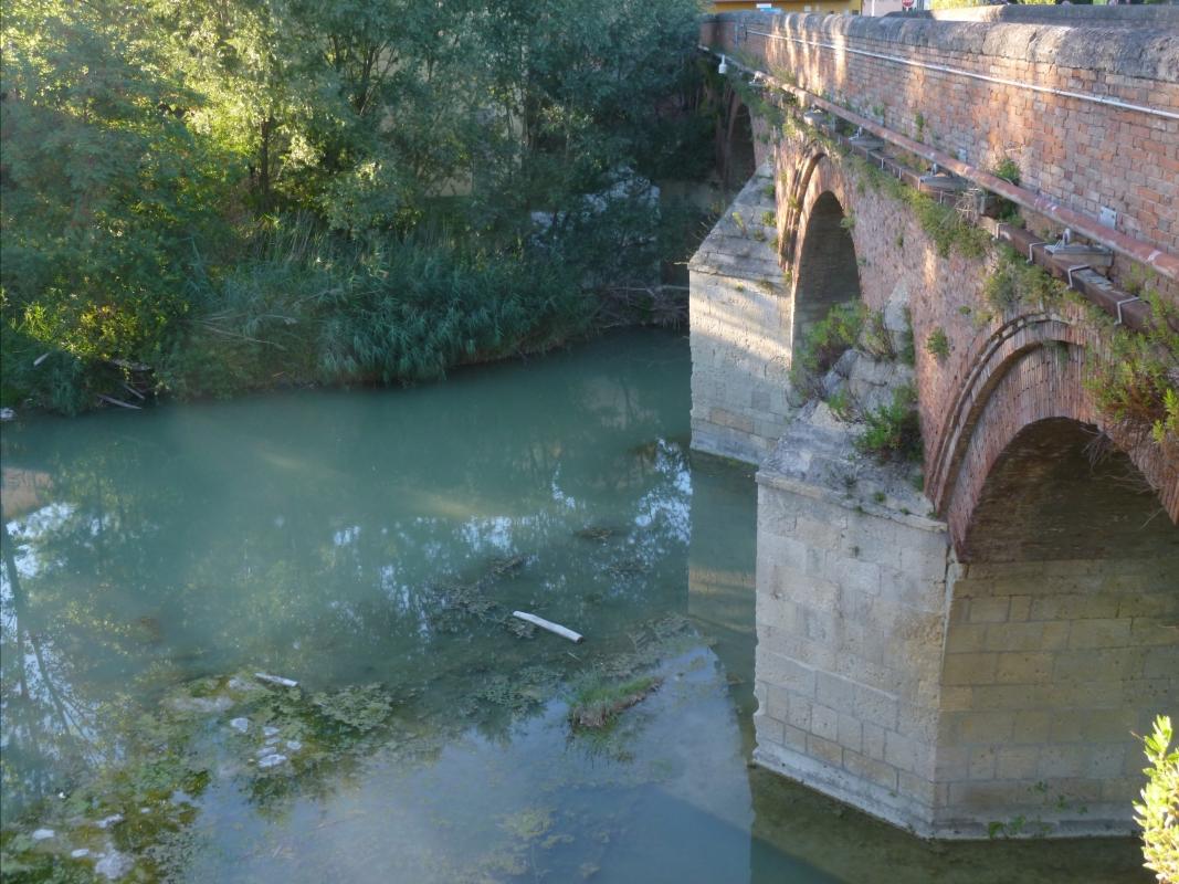Ponte dei Veneziani - Meldola 2 - Diego Baglieri - Meldola (FC)