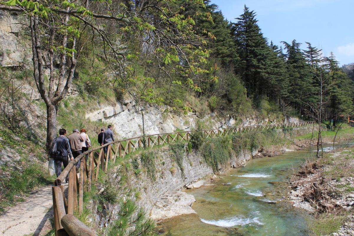 Sentiero lungo argine sinistro fiume Rabbi -Premilcuore 12.04.15 009 - Chiara Dobro - Premilcuore (FC)