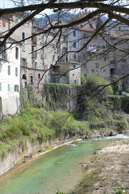 Fiume Rabbi- vista città Premilcuore 12.04.15 005 - Chiara Dobro - Premilcuore (FC)