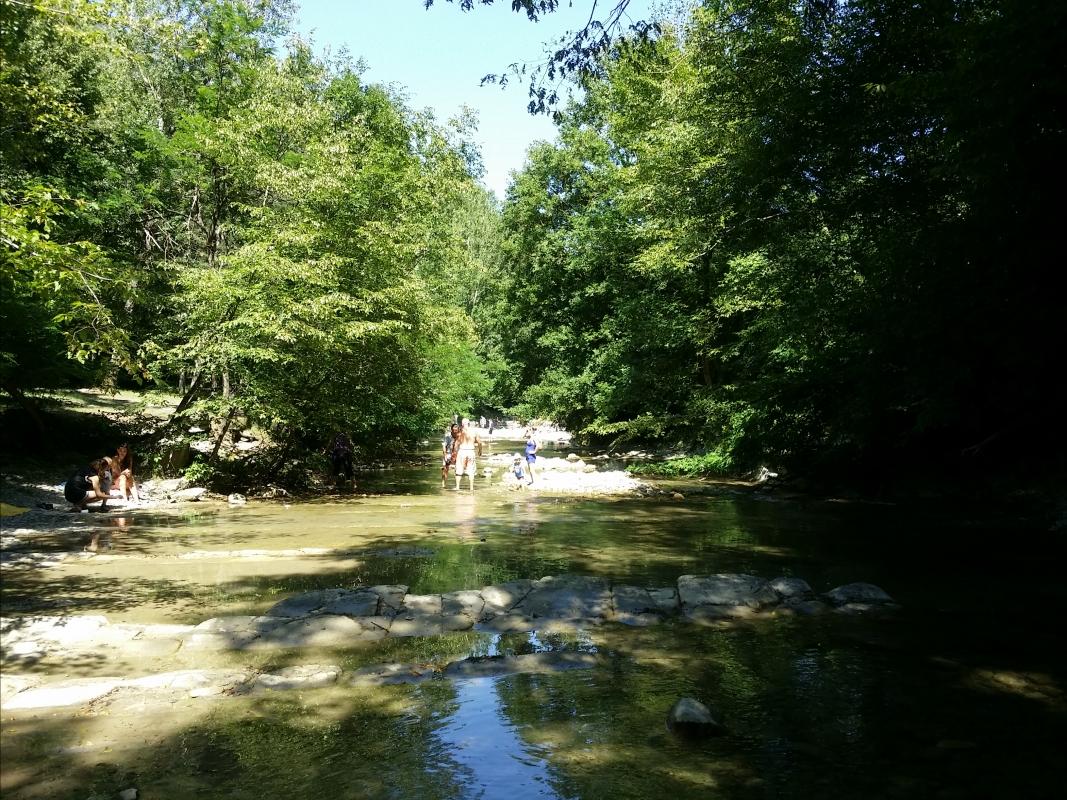 Parco delle Foreste Casentinesi - Chiari86 - Premilcuore (FC)
