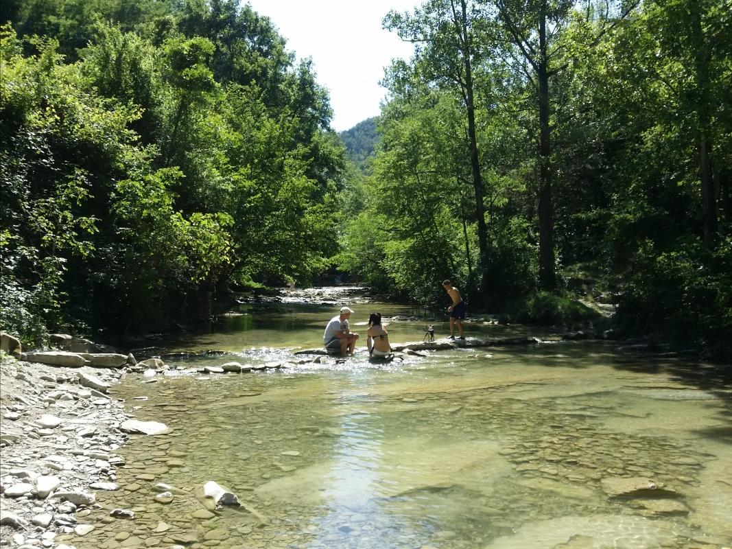 Parco delle Foreste casentinesi - Premilcuore - Chiari86 - Premilcuore (FC)
