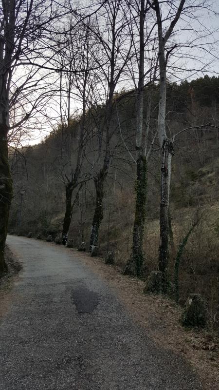Nei dintorni del Palazzo del Capitano 06 - Marco Musmeci - Bagno di Romagna (FC)