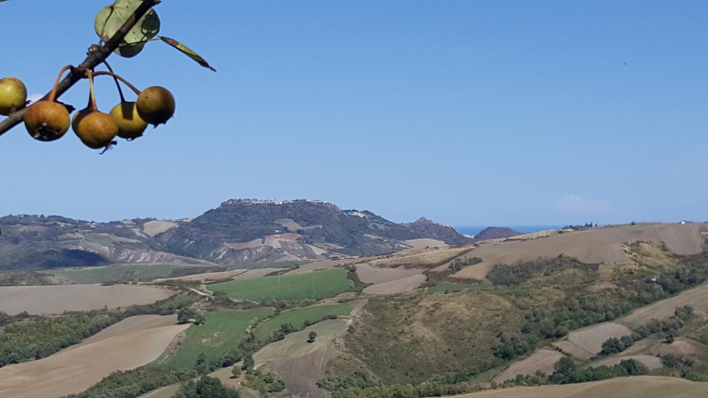 Panorama da lontano 06 - Marco Musmeci - Borghi (FC)