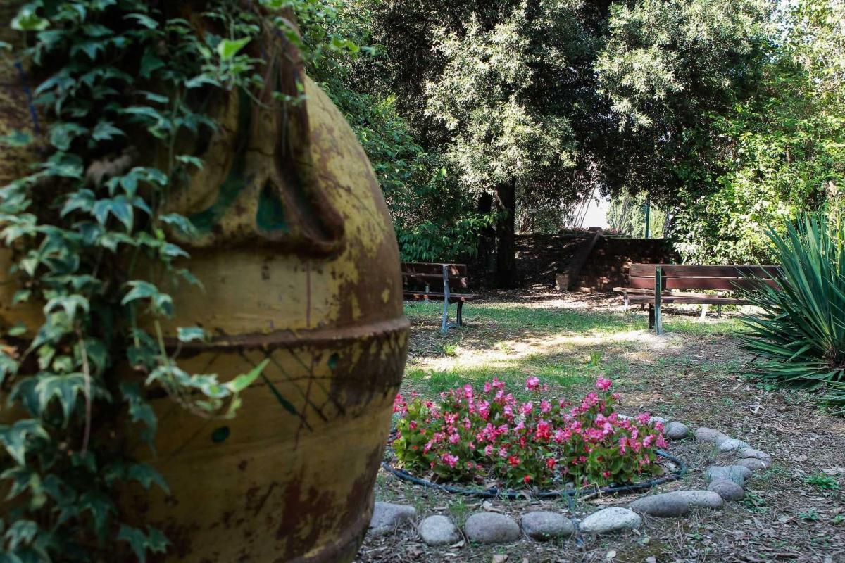 Nel giardino di Villa Silvia-Carducci-2 - Boschettim65 - Cesena (FC)