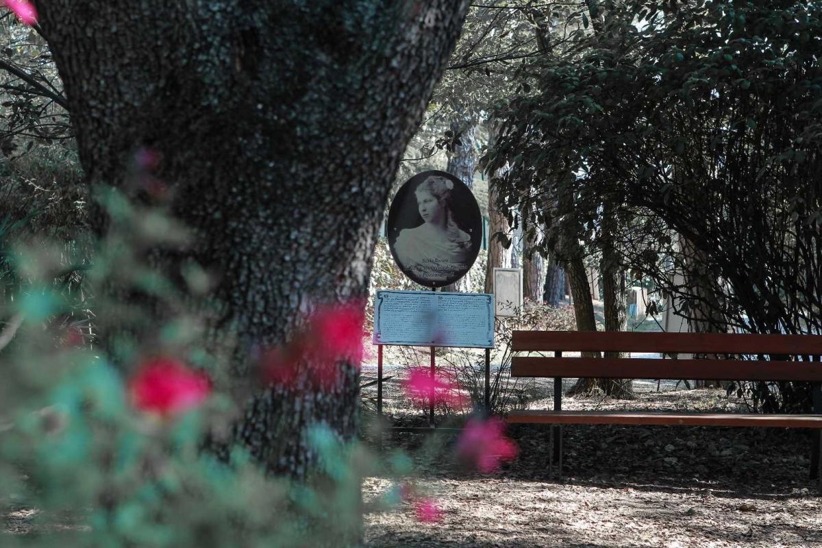 Nel giardino di Villa Silvia-Carducci - Boschettim65 - Cesena (FC)