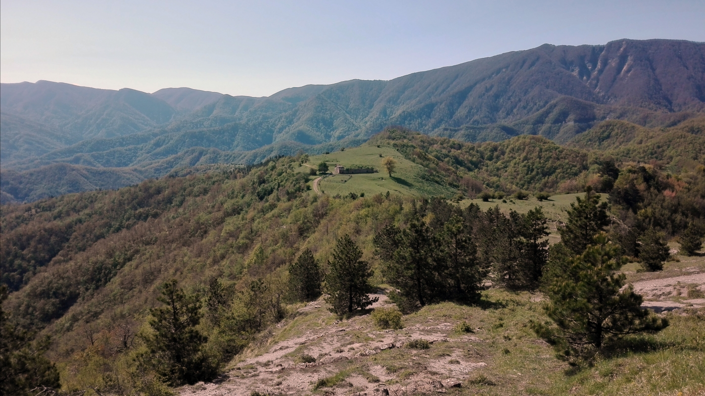 San paolo in Alpe (Santa Sofia) - Nicola Andrucci - Santa Sofia (FC)