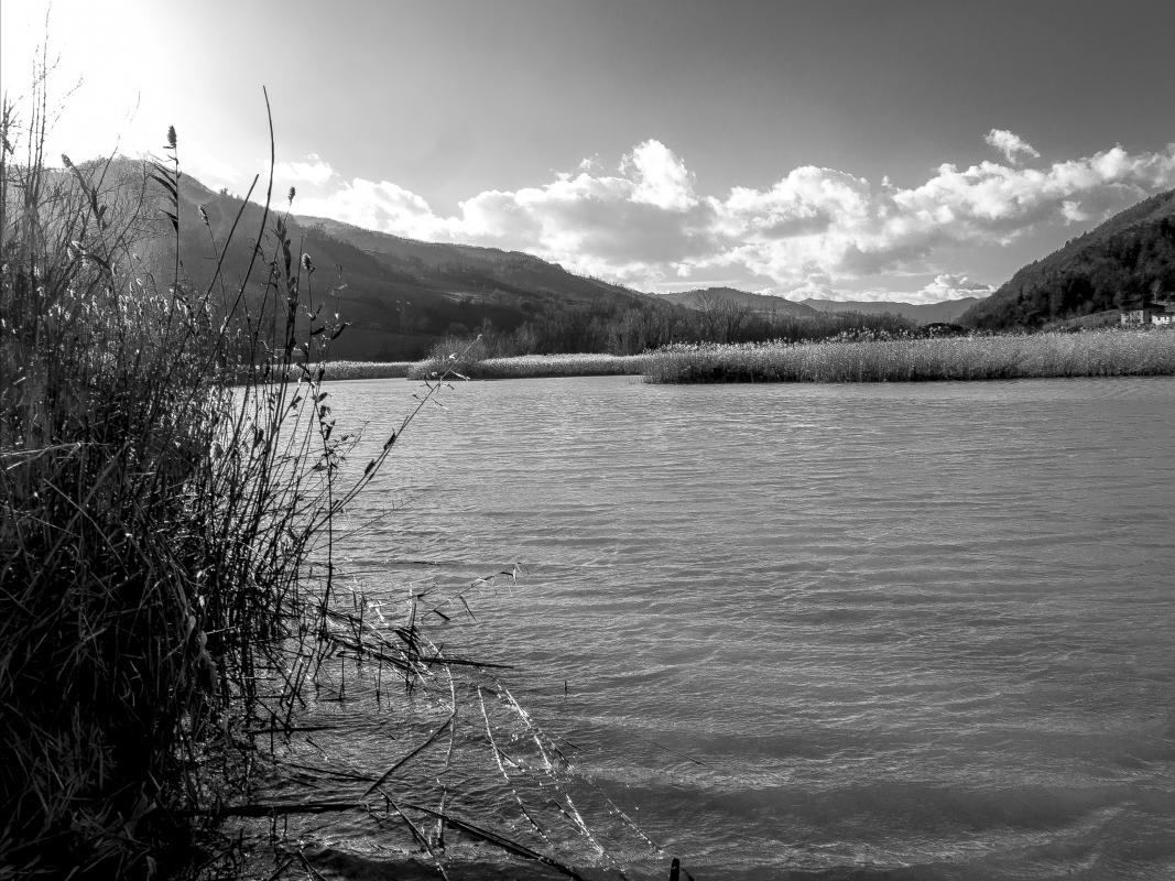 Quarto Lake-28 - Massimo Saviotti - Sarsina (FC)