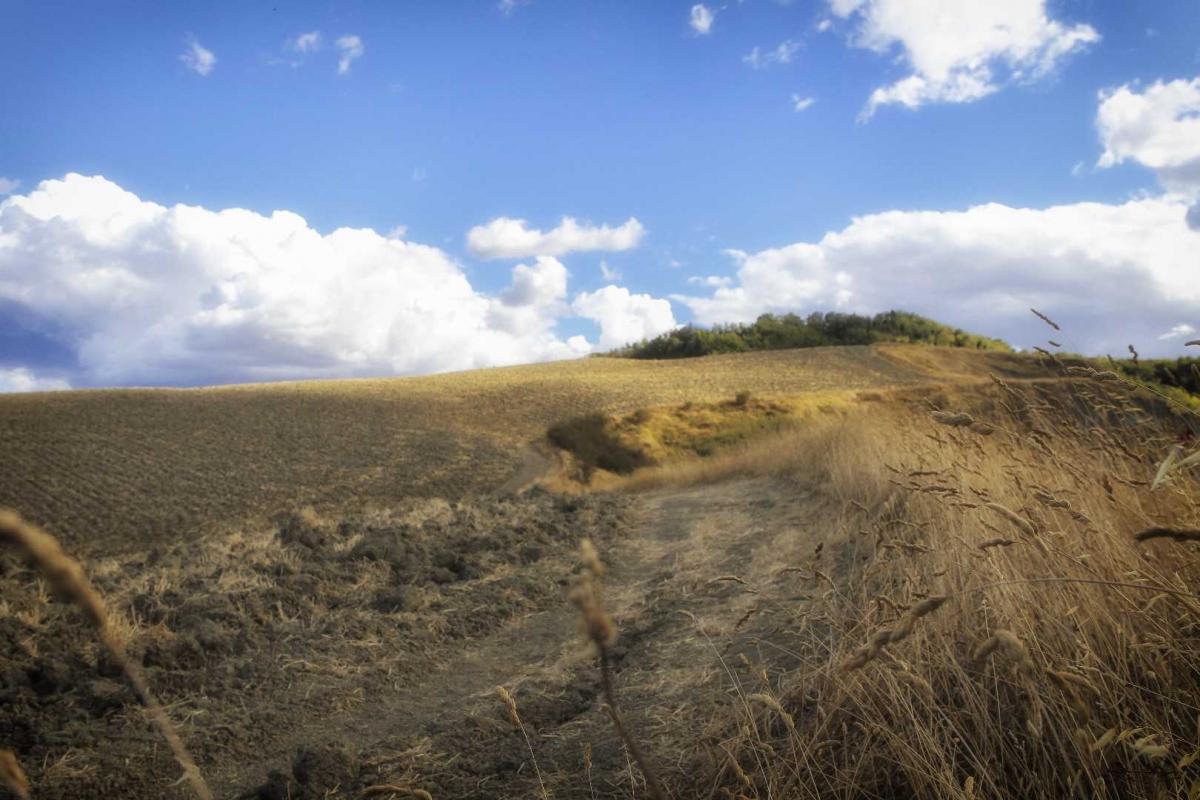 Panorama dalla sorgente Rubicone 3 - Boschetti Marco 65 - Savignano sul Rubicone (FC)