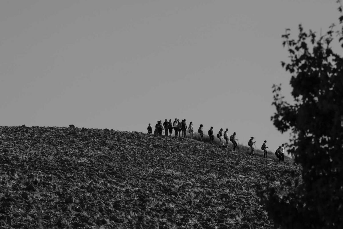 Sentiero dalla sorgente del Rubicone 2 - Boschetti Marco 65 - Savignano sul Rubicone (FC)