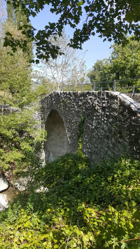 Il Ponte Romano 09 - Marco Musmeci - Verghereto (FC)