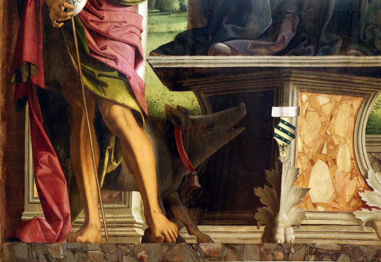 Marco palmezzano, gloria di s. antonio abate tra i ss. giovanni battista e sebastiano (pala ostoli), 1496-97, da s.m. del carmine a forlì 02 cinghiale - Sailko - Forlì (FC)