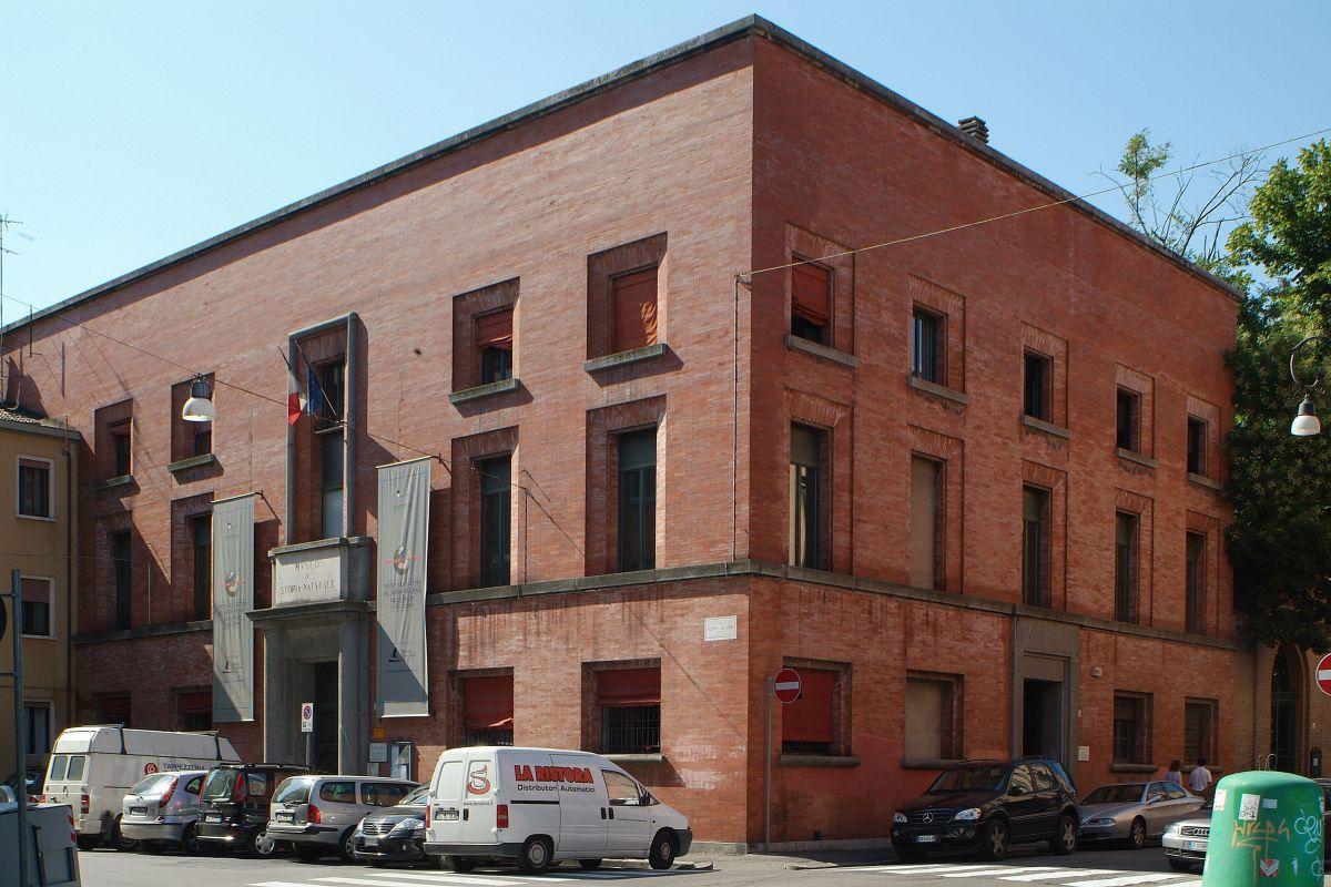 Museo di Storia Naturale - baraldi - Ferrara (FE)