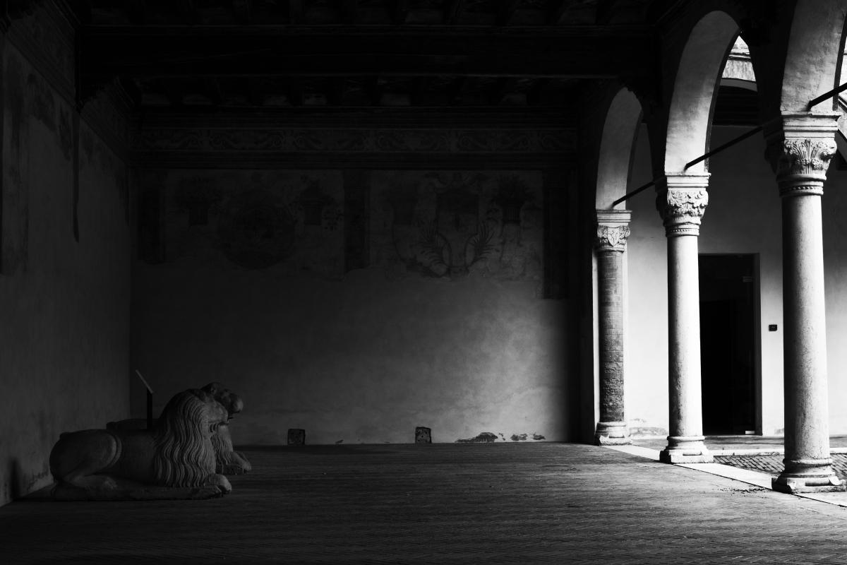 Leoni in Casa Romei - Patrizia Zontini - Ferrara (FE)