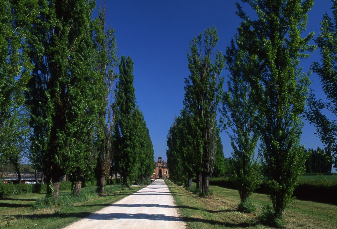 Villa Sessa - Meneghetti - Mirabello (FE)
