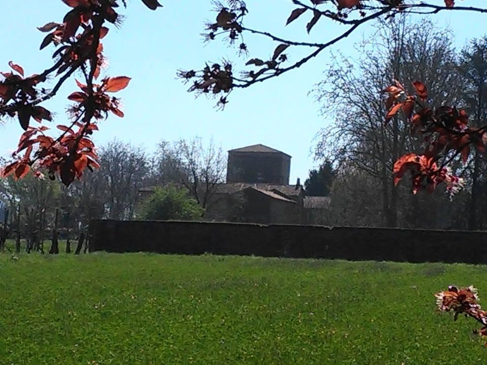 Belriguardo primavera - AlessandroB - Voghiera (FE)