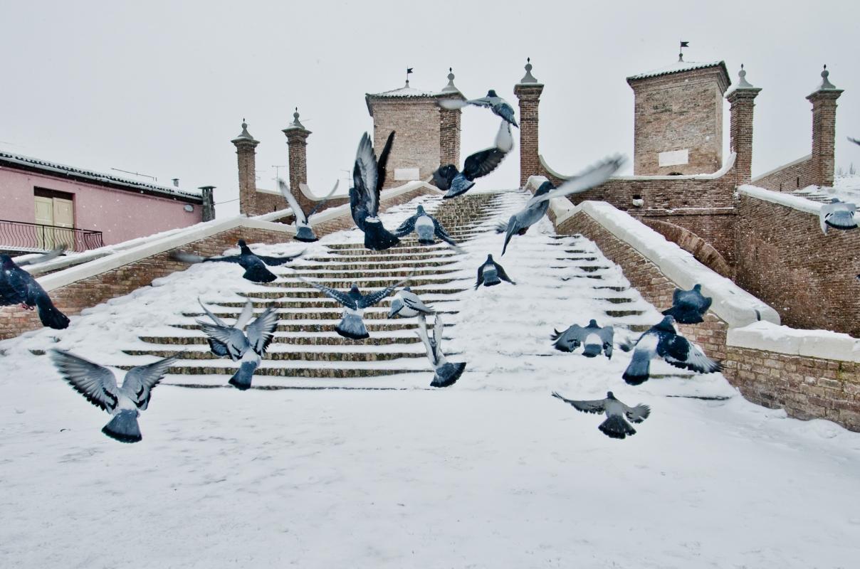 Nevevicata sul centro di Comacchio - Francesco-1978 - Comacchio (FE)