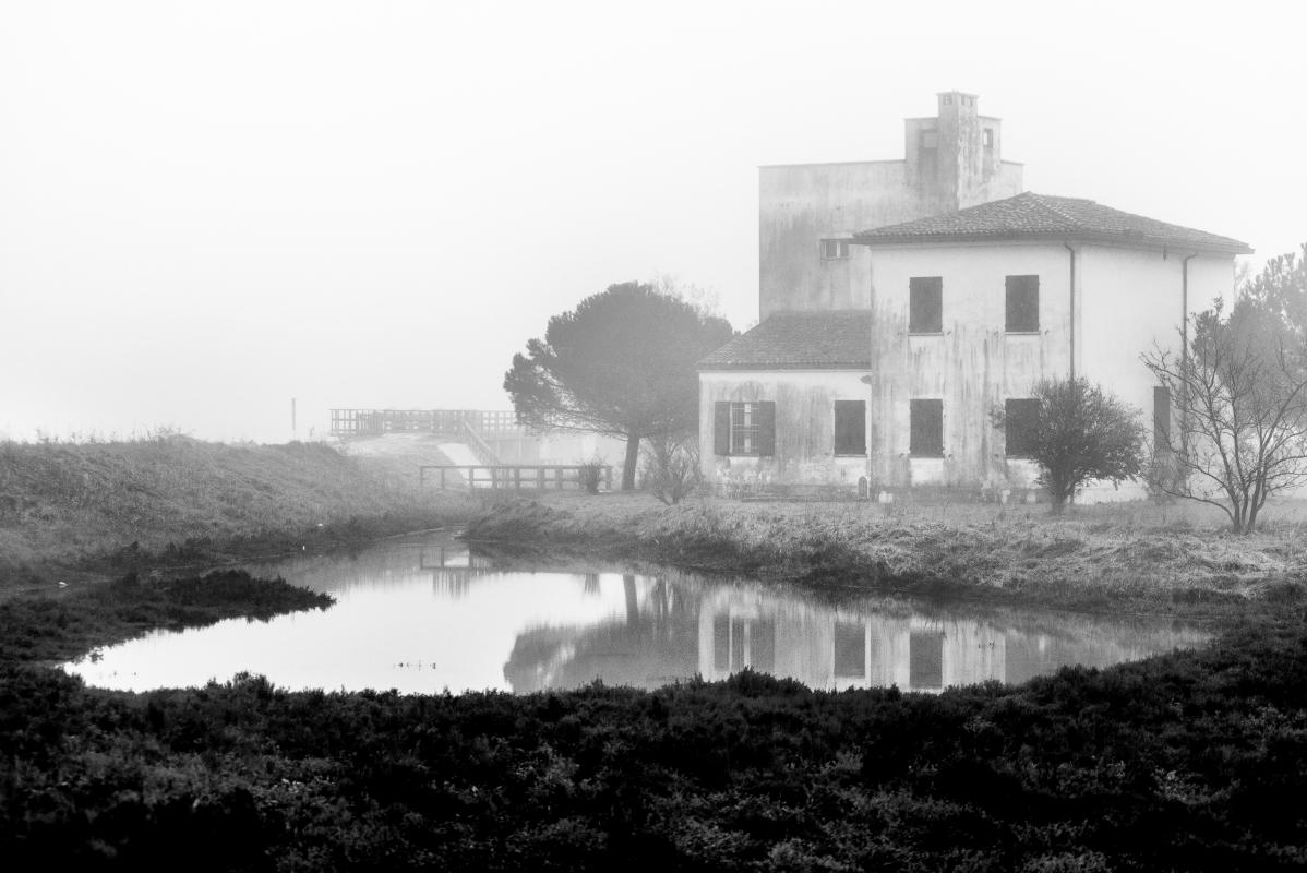 Il Bettolino - Francesco-1978 - Comacchio (FE)